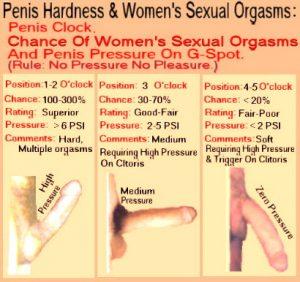 penis_class